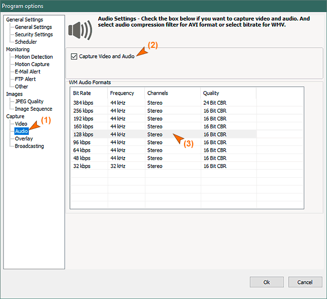 Audio settings for WMV format